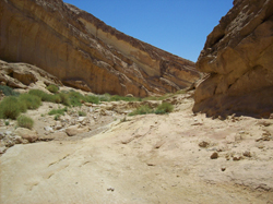 Le Star Wars Canyon