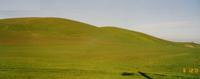 Collines dans le comté de Marin