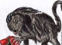 received_10212495620496215 - Copie.jpeg
