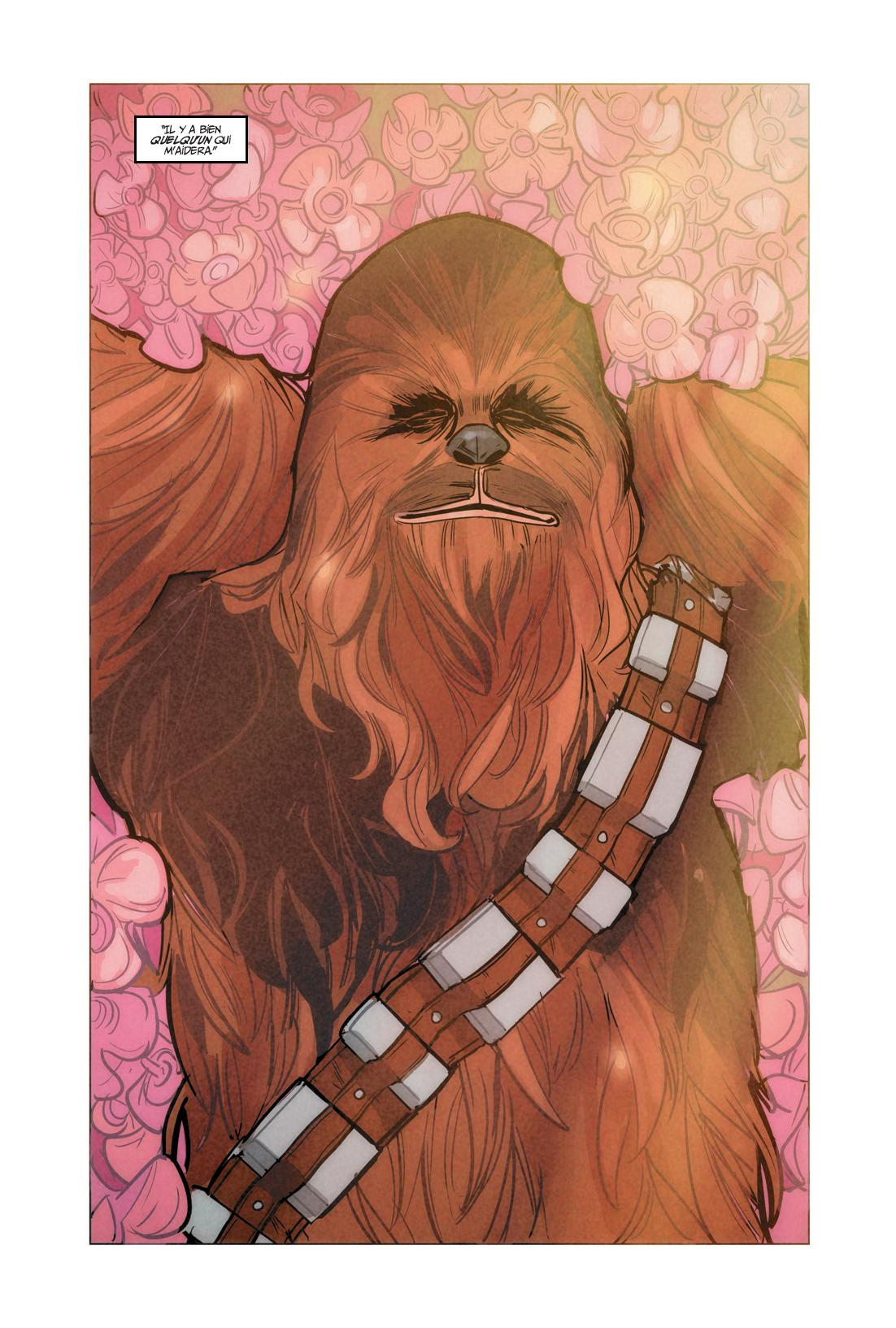 Star Wars Chewie - Preview 3