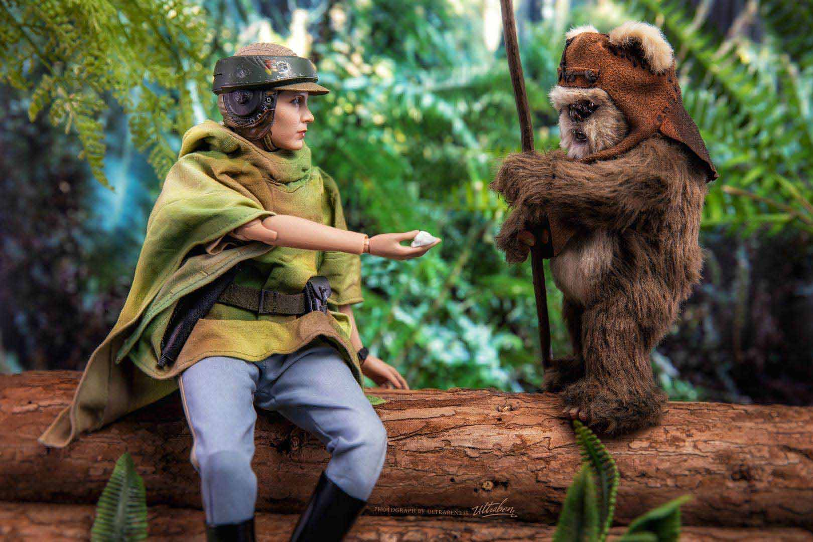 Hot Toys Leia and Wicket