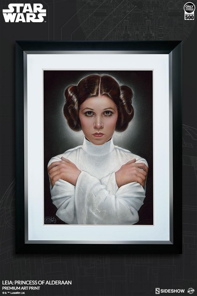 Sideshow Art Print Leia