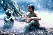 Yoda enseignant à son nouvel apprenti les complexes voies de la Force