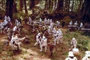 Habillé de blanc en pleine forêt, comme camouflage, on a vu mieux!