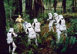 Un groupe de <a href='/organisation-354-stormtroopers.html' class='qtip_motcle' tt_type='organisation' tt_id=354>Stormtroopers</a> en blanc dans la foret!