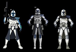 Evolution des clones