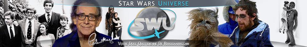 Bannière Star Wars : Hommage à Peter Mayhew