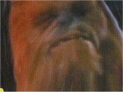 Han et Chewie