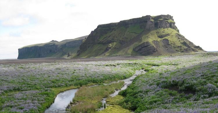 Montagnes de Hjörleifshöfði