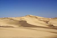 Dunes Algodones