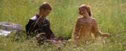 pique-nique dans l'herbe